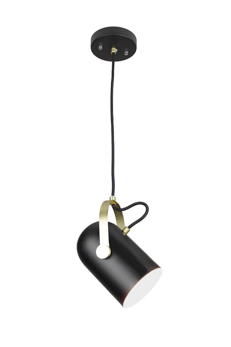 Eqlight eqitpb1 industrial theatrical directional pendant light eqlight eqitpb1 industrial theatrical directional pendant light aloadofball Image collections
